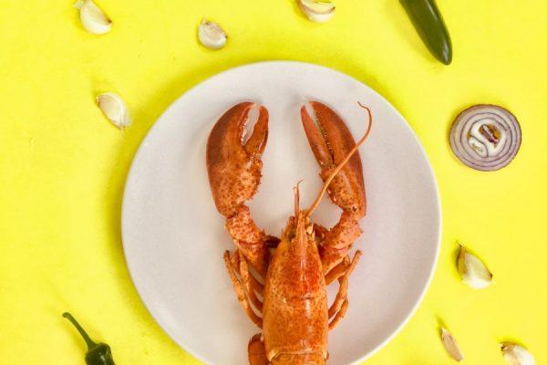 chili-colors-cuisine-1194431